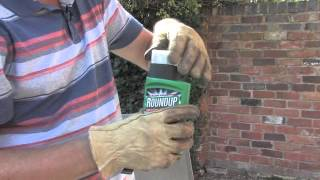 How to get rid of tree stumps ? | Video | Roundup Weedkiller