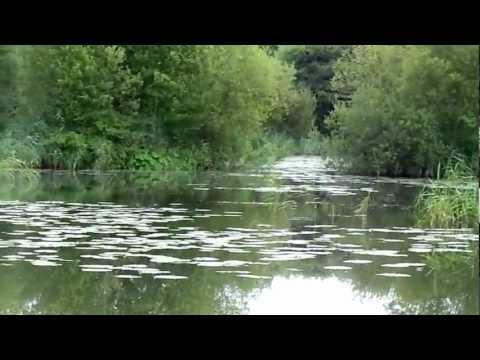 Fishing at Burshill A Pond (Hull & District Angling Association)