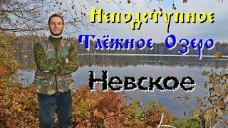Рыбалка на озере невское севастьяново
