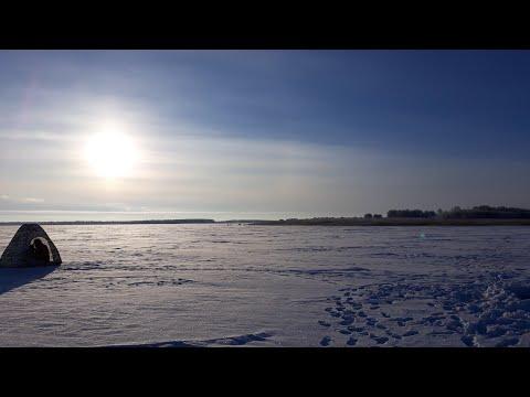 Окунь. Подледный лов. Озеро Кислое Курганская область 15.12.2018