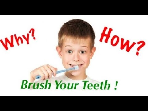 Why  \u0026 how to brush your teeth ?