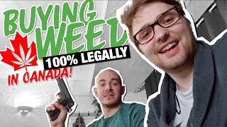 Download Video What Happened When Canada Legalized Cannabis  | Documentary Ft. OpenMind MP3 3GP MP4