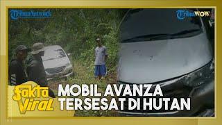 Fakta Viral: Di Balik Mobil Avanza Tersesat di Tengah Hutan, Sopir Tergiur dengan Jalan Banyak Lampu