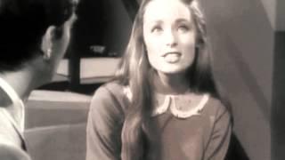 Evening Primrose Clip - Clip I Remember