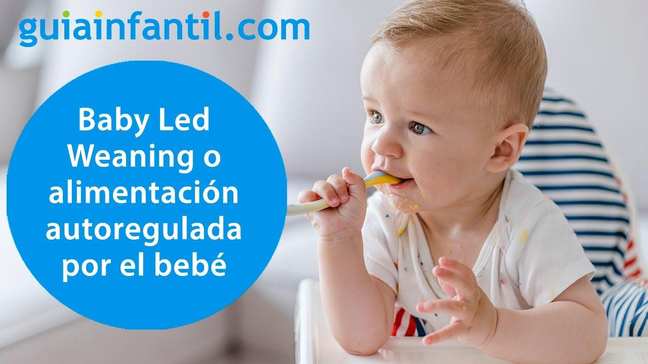 Por qué usar el BLW o Baby Led Weaning para dar sólidos a los bebés   Alimentación complementaria