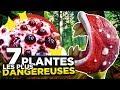 """Regardez """"7 PLANTES les plus DANGEREUSES AU MONDE"""" sur YouTube"""