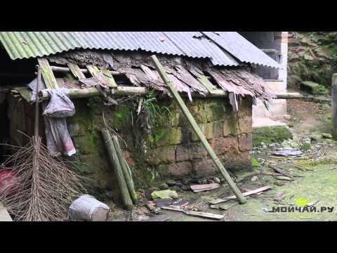 Путешествие за Хэй Ча в провинцию Хунань - Аньхуа и Иян. Hunan. Anhua, Dark Tea онлайн видео