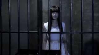 """FUNGUS """"脱走!フリーダム"""" (Official Music Video)"""