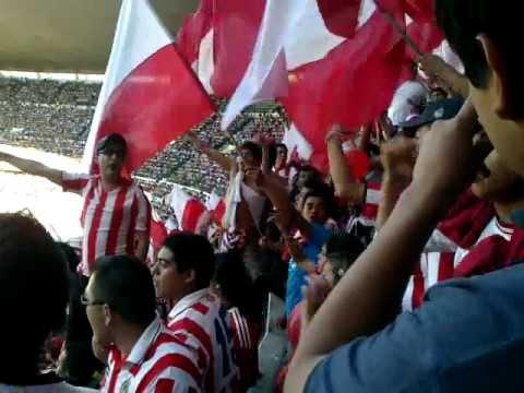 """""""La Insurgencia! chivas vs wilas 2011 Jornada 14"""" Barra: Barra Insurgencia • Club: Chivas Guadalajara"""