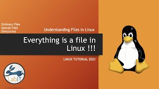 Lecture 8 of 29 : Understanding Files in Linux : Everything is a File