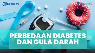 Ini Perbedaan Diabetes dan Gula Darah yang Ada Dalam Tubuh