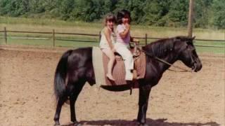 Ponys Ponys Ponys