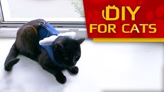 DIY 🐈 - How To Make Cat Harness - Easy & Fast (REUPLOAD)
