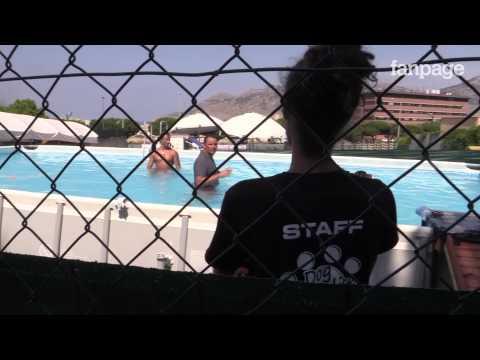 Dog Paradise, il parco giochi per cani a Palermo