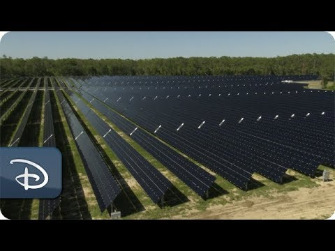 Disney solar facility capable of powering two theme parks