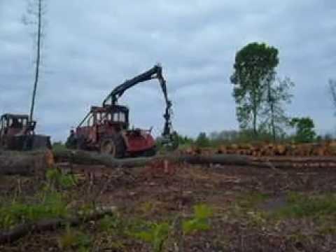 Timberjack 360 Sokolac - Milan Kovacevic - Video - Free Music Videos