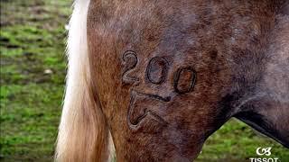Cavalo Campeiro Expolages 2018