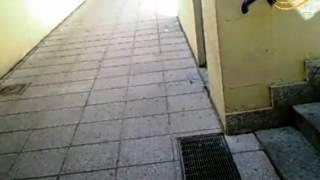 preview picture of video 'Il Faro on line - Scandaloso_scivolo_per_disabili'
