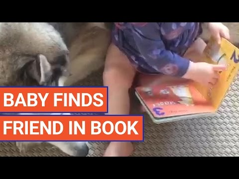 Cute Baby Finds Dog Friend in Book Puppy Pet Video 2017   Daily Heart Beat