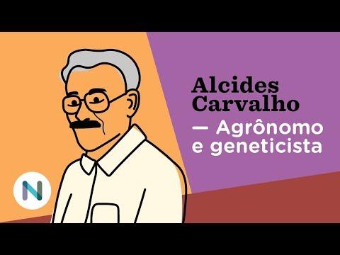 O geneticista que elevou a qualidade do café brasileiro: Alcides Carvalho