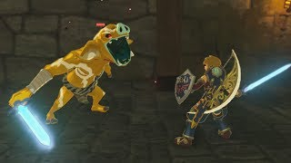 Gold Bokoblin Picks up The Fully Powered Master Sword - Zelda Breath of the Wild