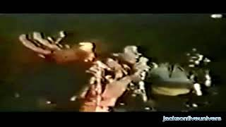 THE JACKSON FIVE HALLELUJAH DAY JAPAN TOUR 04/73