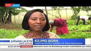 Kilimo Bora: Tunaangazia kilimo endelevu Naivasha