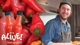 Brad Makes Fermented Hot Sauce | It's Alive | Bon Appétit - dooclip.me