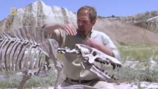 Доисторические Хищники  Адский Кабан  Энтелодонт   National Geographic HD