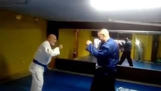 MMA Moya 203