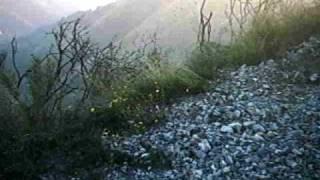 preview picture of video 'Enduro DRZ 400 verso la Cava'