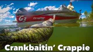 Catching Crappie On Cranks In Hot Weather