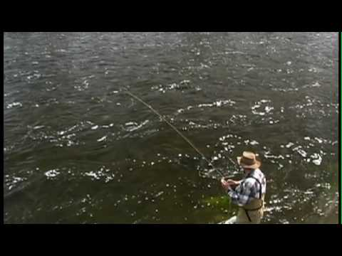 •+ Watch Full Fly Fishing Yellowstone Hatches