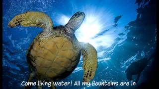 All My Fountains By Chris Tomlin (lyrics)