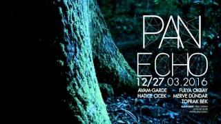 PAN ECHO 12/27 Mart