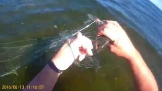 Проверка сети, утро субботы, ветер сильный, рыбы мало