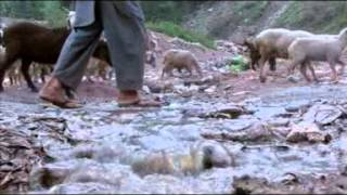 AabEHayat  A Documentary On Water & Sanitation Programme Of ERRA