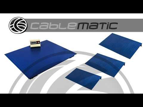 Balanza industrial de plataforma Báscula de suelo 4000 Kg y rampa - distribuido por CABLEMATIC ®