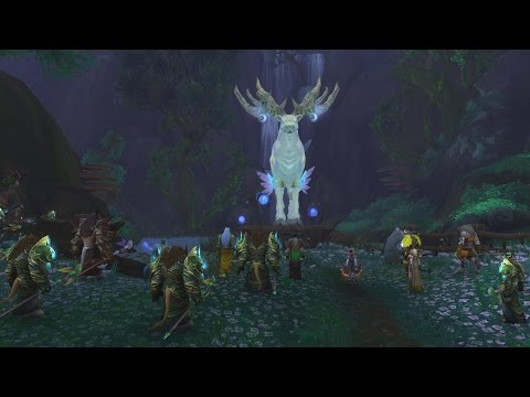 The Story of the Druid Order Hall Campaign