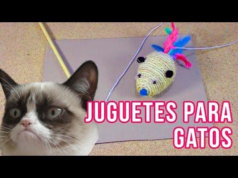 Cómo hacer Juguetes Para Gatos Jelicales DIY |  Ft Khaleesi