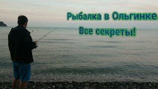 Рыбалка в новомихайловском туапсинского района с берега