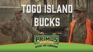 Togo Island Big Buck Vacation