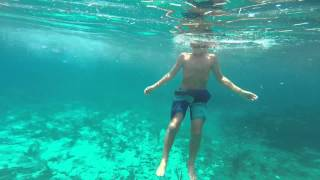 preview picture of video 'Adventure! - Snorkeling the reef in Freeport, Bahamas'