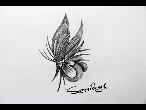 Very Simple Way To Draw Butterfly   Pencil Drawing