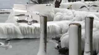 preview picture of video 'VERSOIX et GENÈVE, la glace,.février 2012'