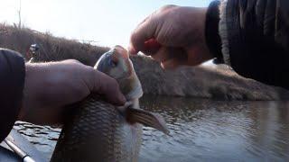 Рыбалка на оке весной в рязание 2020
