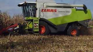 preview picture of video 'Kukurydza 2014 Nowy nabytek Claas Lexion 520 |New Holland 2x| Zbucz Podlasie'