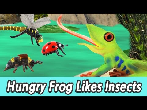 [EN] #69 Hungry Frog Likes Insects, kids education, Collecta figureㅣCoCosToy