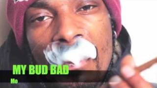 My Bud Bad (My Chick Bad Remix)