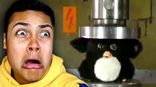 DON'T PUT FURBY IN A HYDRAULIC PRESS (Reacting To Memes)